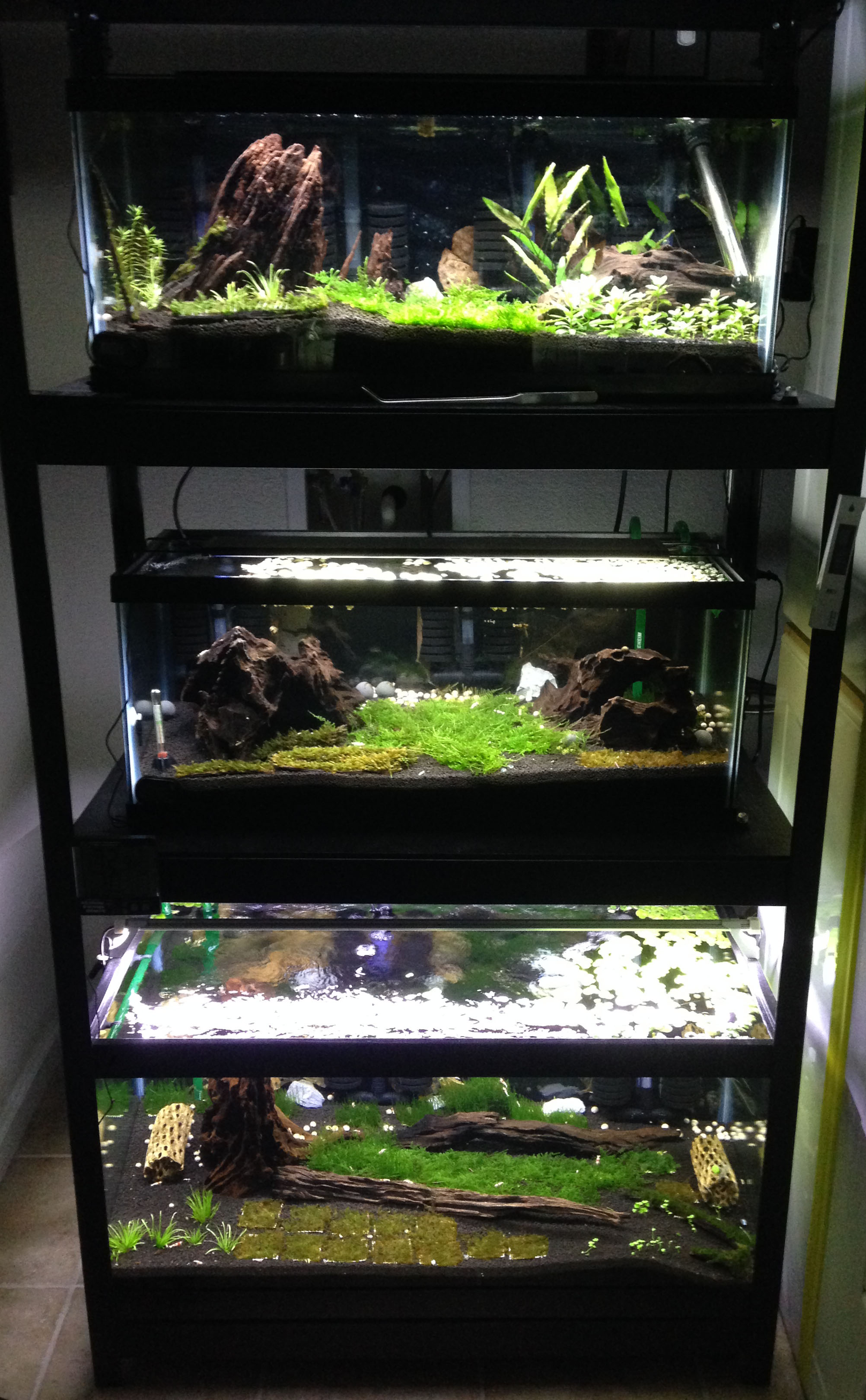 ADA Plant Tanks