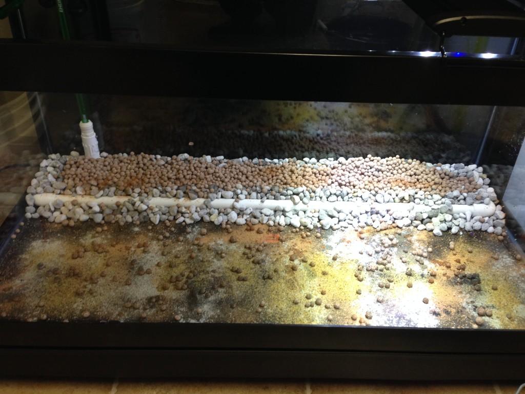 Underground filter with Seachem Matrix + Eheim substrat pro + minerals + bacteria